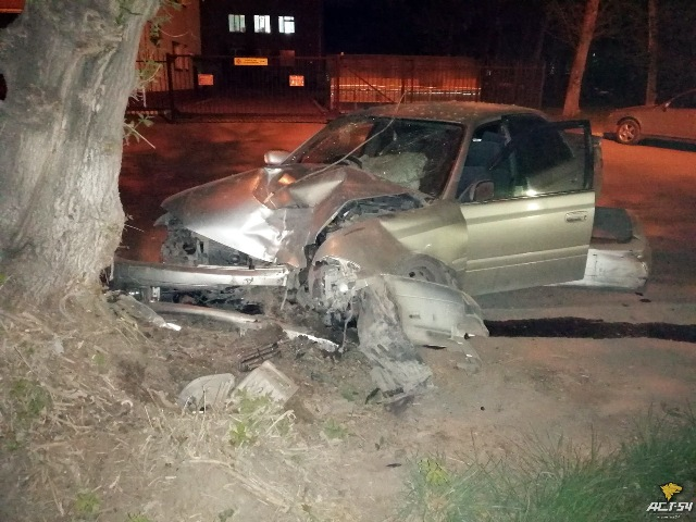 Toyota Carina влетела в дерево в Ленинском районе