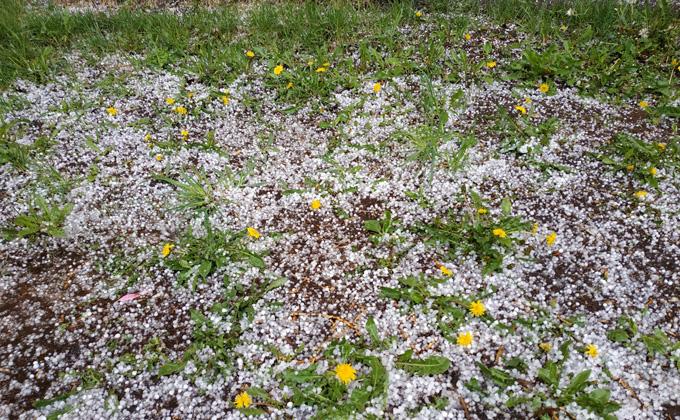 Погода 25 и 26 мая в Новосибирске: жаркая суббота и холодное воскресенье