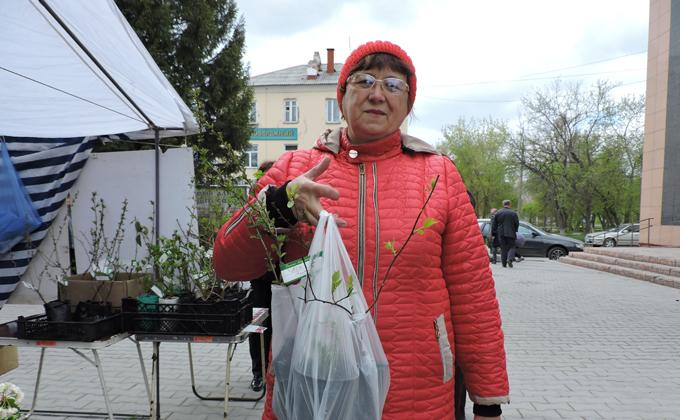«Северное киви» будут выращивать в Искитимском районе
