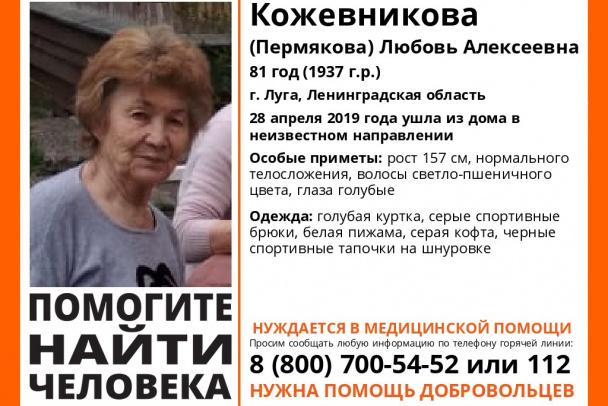 Спасатели неделю ищут пропавшую в Лужском районе пенсионерку